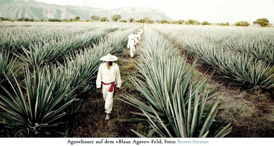 Tequila, Bauern,